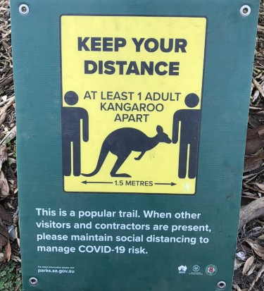 Social distancing guidelines - Aussie style!