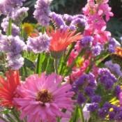 1906-flowers2