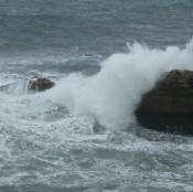 1906-waves2